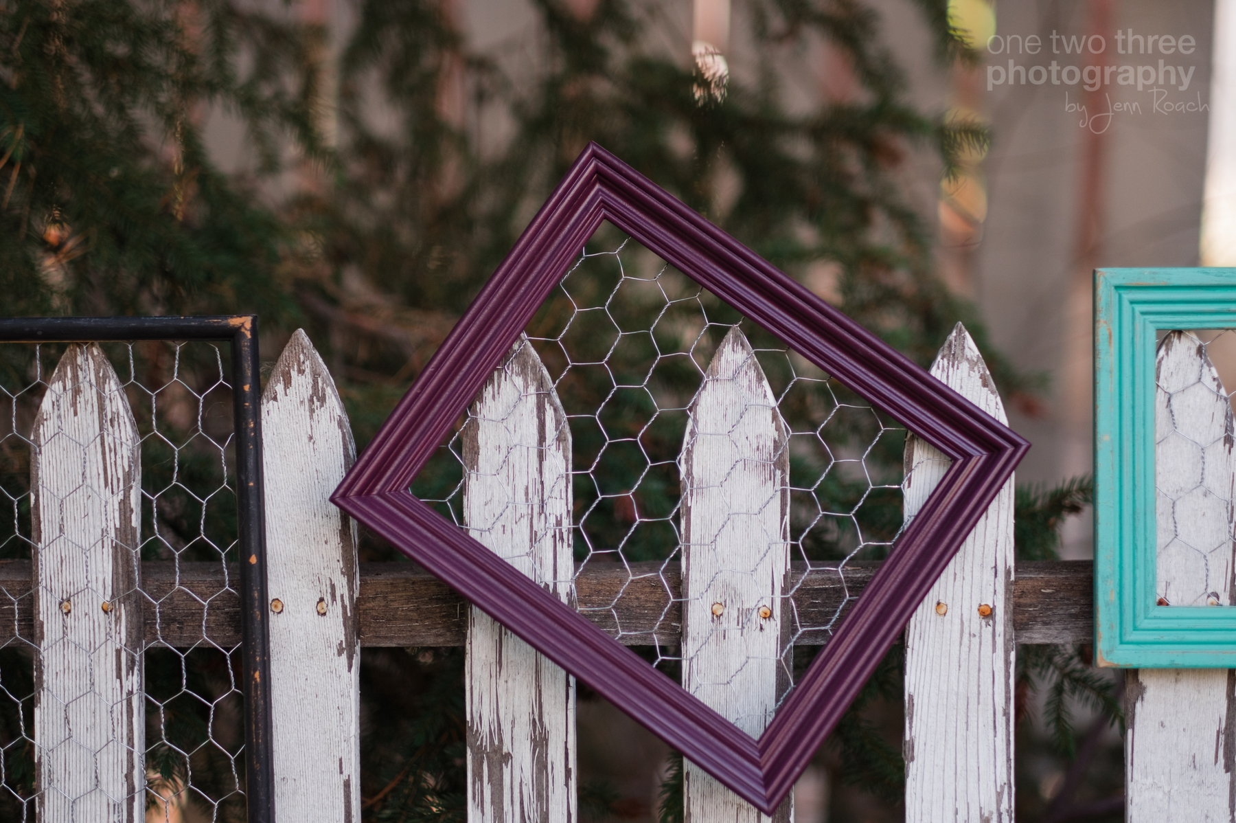 More details of frames with wire used for hanging photos or recipes